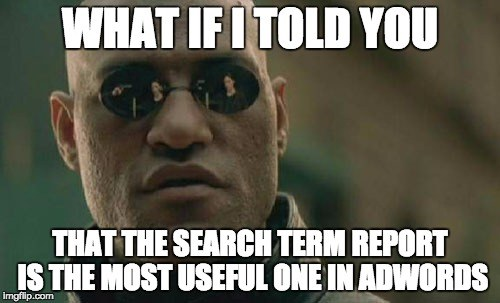 search term reports are really important